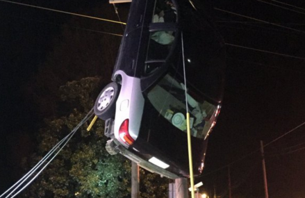 Tennessee Woman drives up telephone pole.