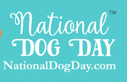 "National Dog Day & Celebrity Puppies that may you go ""aww."""