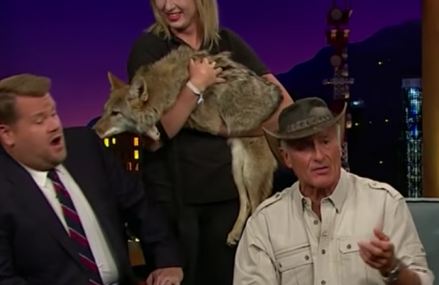 James Corden meets exotic animals and tells one to chill out! Hilarious!