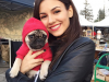 victoria-justice-chose-the-pug-life-